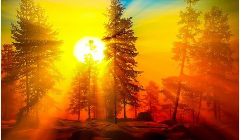 Ek Ong Kar Sat Gur Prasad Mantra to Reverse Negative to Positive