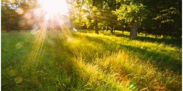 Tu Thakur Tum Peh Ardas - Meditative Gurbani for Peace of Mind 2